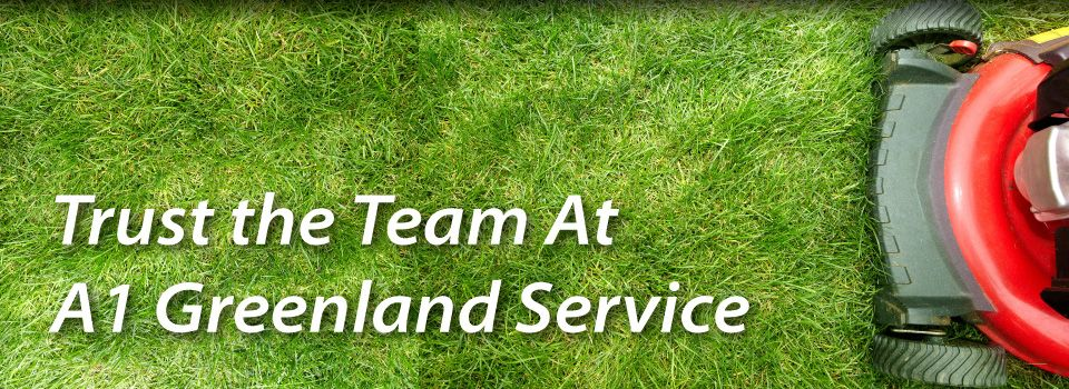 Trust the Team At A1 Greenland Service